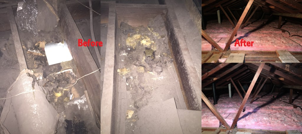 clean attic before and atfer